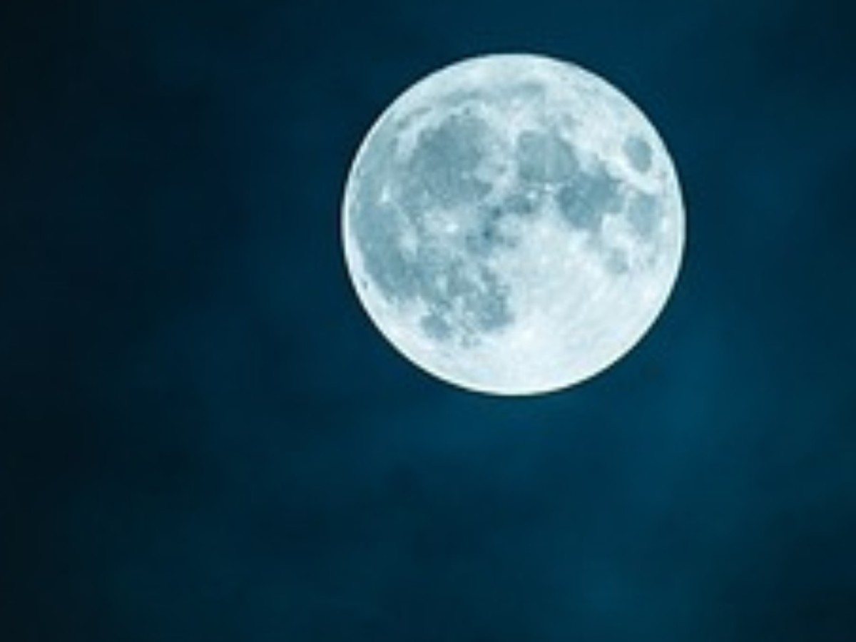 Moon Ate the Dark Challenge: Sarah Doughty/Scythe