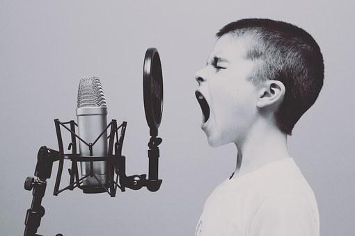microphone-1209816__340