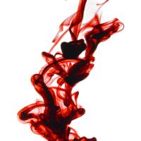 Blood Into Ink Writing Prompt Challenge: Kiera's Voice/Vivian Zems