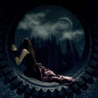 You Were Meant to Know the Night Writing Prompt Challenge: Knowing Borne in the Night/Aurora Phoenix